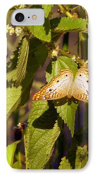 IPhone Case featuring the photograph White Peacock Butterfly by Terri Mills