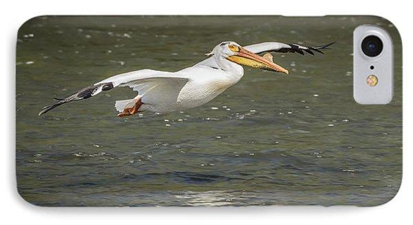 White Pelican 1-2015 IPhone Case