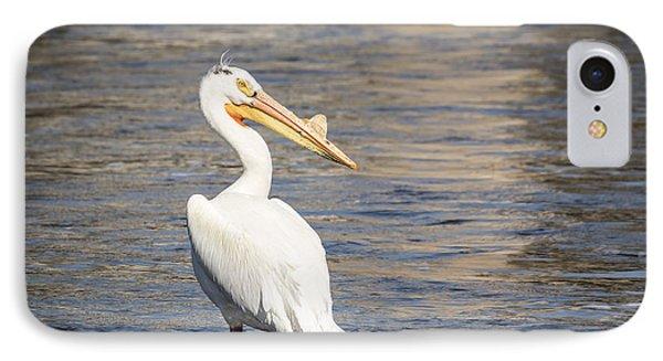 White Pelican 2-2015 IPhone Case