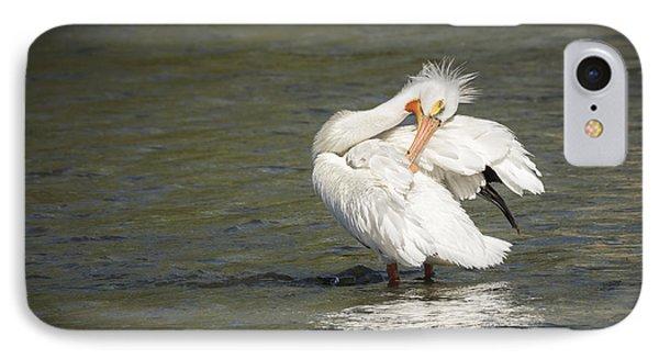 White Pelican 3-2015 IPhone Case