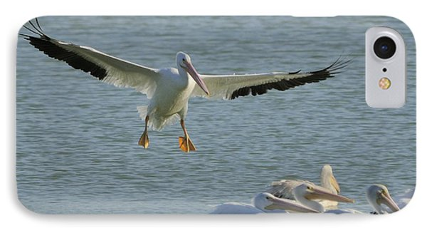 IPhone Case featuring the photograph White Pelican Landing by Bradford Martin