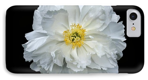 White Peony IPhone Case by Charles Harden