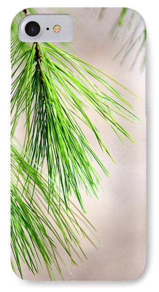 IPhone Case featuring the photograph White Pine Branch by Christina Rollo