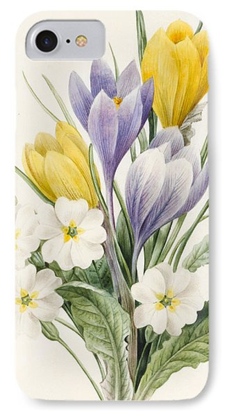 White Primroses And Early Hybrid Crocuses IPhone Case by Louise D'Orleans