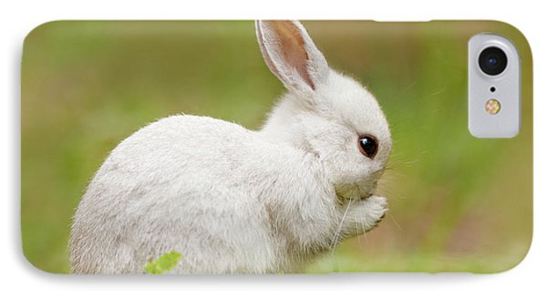 White Rabbit - Cute Overload IPhone Case by Roeselien Raimond