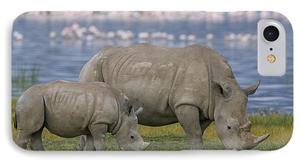 White Rhino Mother And Calf Grazing Phone Case by Ingo Arndt