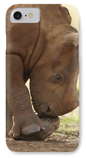 White Rhinoceros Ceratotherium Simum Phone Case by Matthias Breiter