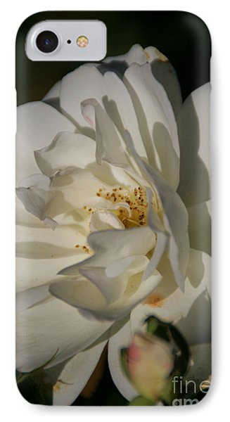 White Rose IPhone Case by Andrea Jean