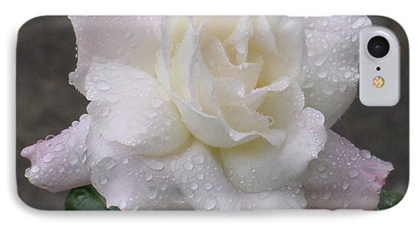White Rose In Rain - 3 IPhone Case by Shirley Heyn