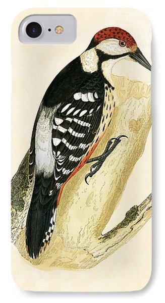 White Rumped Woodpecker IPhone 7 Case