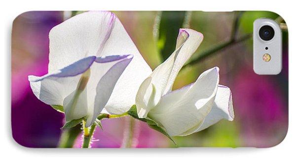 White Sweet Pea 3344 IPhone Case