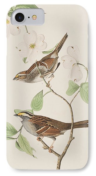 White Throated Sparrow IPhone 7 Case