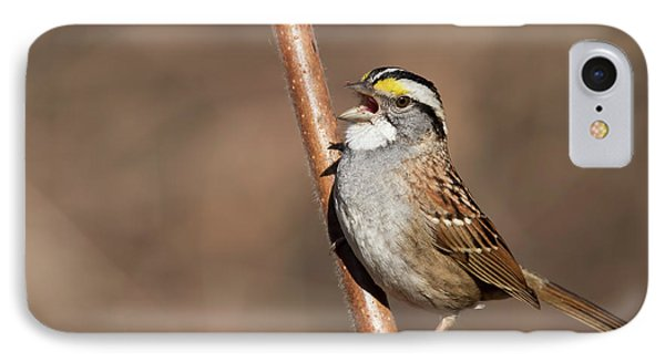 IPhone Case featuring the photograph White-throated Sparrow by Mircea Costina Photography