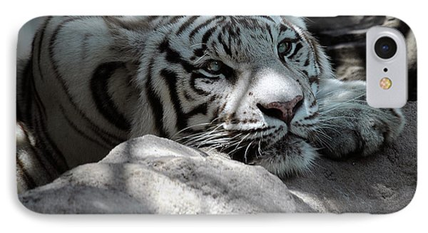 White Tiger Contiplation IPhone Case