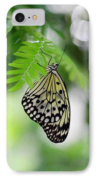 White Tree Nymph Butterfly 2 IPhone Case by Marie Hicks