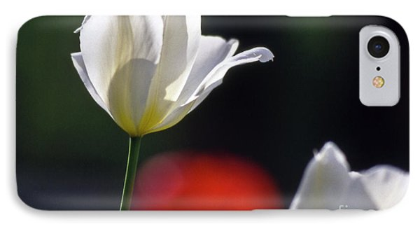 White Tulips  Blossom Phone Case by Heiko Koehrer-Wagner