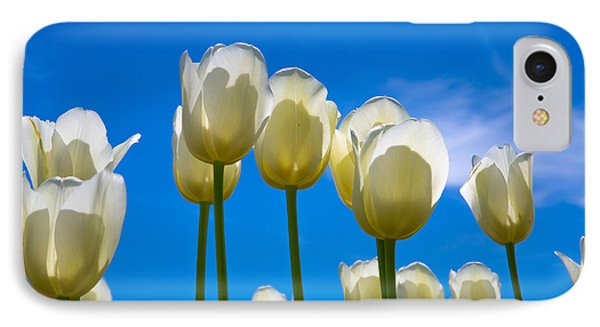 White Tulips  IPhone Case by John Roberts