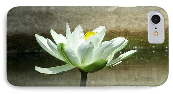 IPhone Case featuring the photograph White Water Lily 2 by Randall Weidner