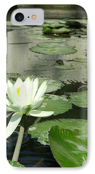 IPhone Case featuring the photograph White Water Lily 3 by Randall Weidner