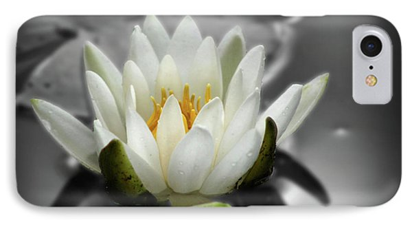 IPhone Case featuring the photograph White Water Lily Black And White by Smilin Eyes  Treasures