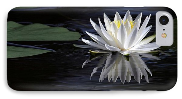 White Water Lily Phone Case by Sabrina L Ryan