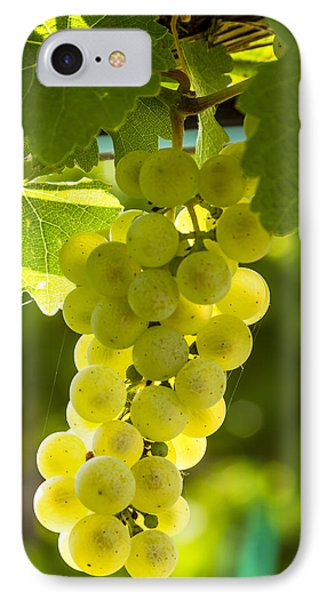 White Wine Grapes Lit By The Sun IPhone Case by Teri Virbickis