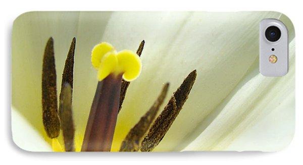 White Yellow Tulip Flower Fine Art Prints Phone Case by Baslee Troutman