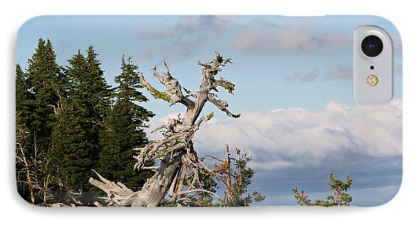 Whitebark Pine At Crater Lake's Rim - Oregon Phone Case by Christine Till