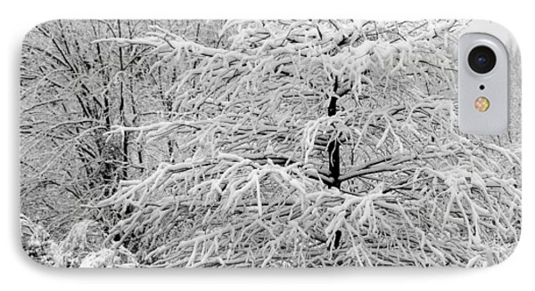 Whiteout In The Wetlands IPhone Case by John Harding
