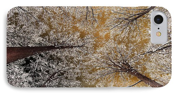 IPhone Case featuring the photograph Whiteout by Tony Beck