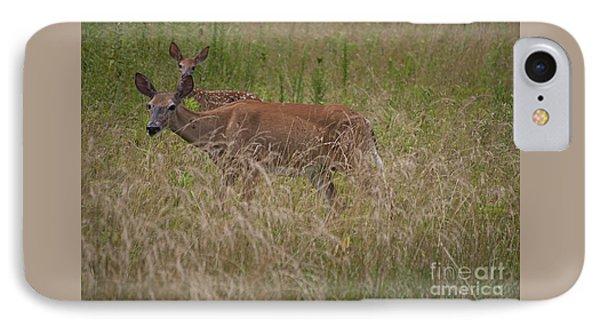Whitetail With Fawn 20120707_09a IPhone Case by Tina Hopkins