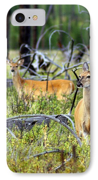 Whitetails Phone Case by Marty Koch
