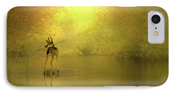 A Silent Autumn Morning IPhone Case by Diane Schuster