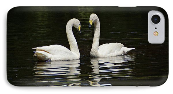 IPhone Case featuring the photograph Whooper Swans by Sandy Keeton