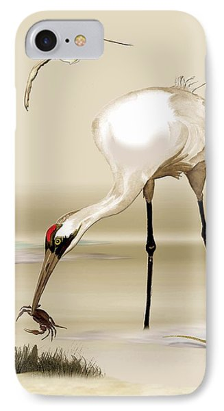 Whooping Crane IPhone Case by Anne Beverley-Stamps