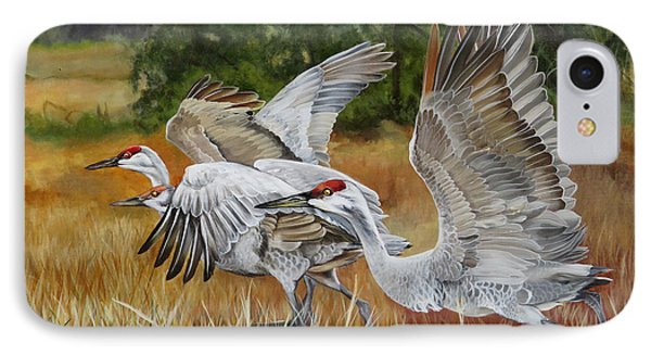 Sandhill Cranes In A Field IPhone Case