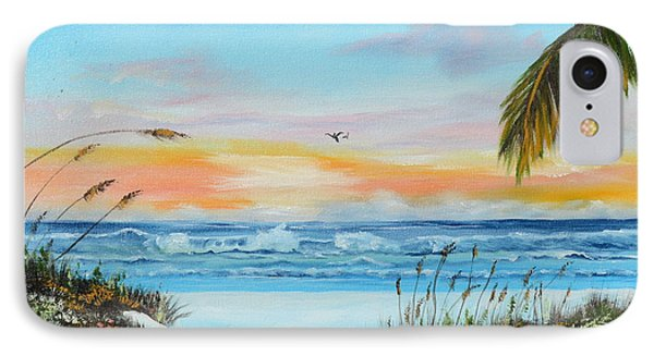 Why Not Siesta Key IPhone Case by Lloyd Dobson