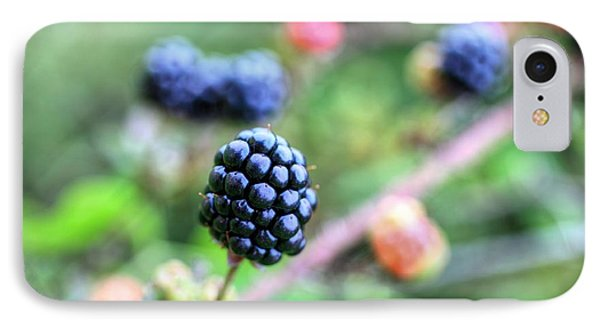 Wild Berries  IPhone Case by JC Findley