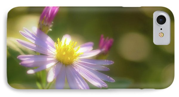 Wild Chrysanthemum IPhone Case