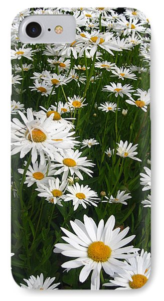 Wild Daisies IPhone Case by Dorothy Cunningham
