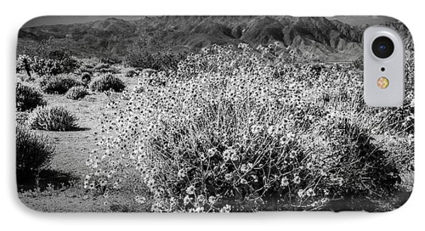 IPhone Case featuring the photograph Wild Desert Flowers Blooming In Black And White In The Anza-borrego Desert State Park by Randall Nyhof