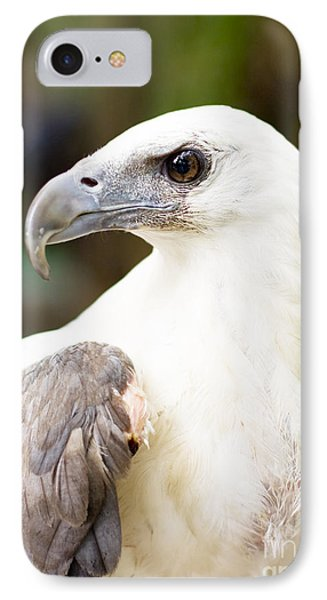IPhone Case featuring the photograph Wild Eagle by Jorgo Photography - Wall Art Gallery