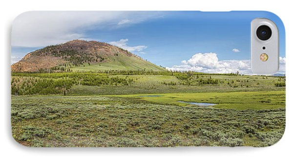 IPhone Case featuring the photograph Wild Flowers And Grasses At Yellowstone by John M Bailey