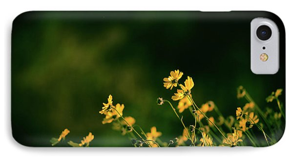 IPhone Case featuring the photograph Evening Wild Flowers by Kelly Wade