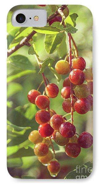 Wild Fruits 2 IPhone Case