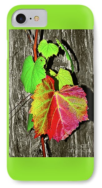 IPhone Case featuring the photograph Wild Grape Vine By Kaye Menner by Kaye Menner