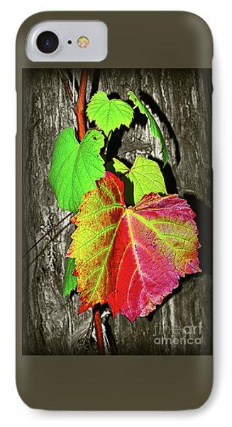 IPhone Case featuring the photograph Wild Grape Vine II By Kaye Menner by Kaye Menner