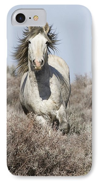 Wild Grey Stallion Runs Close Phone Case by Carol Walker