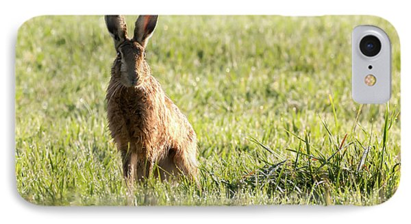 Wild Hare Sat Next To Water IPhone Case by Simon Bratt Photography LRPS