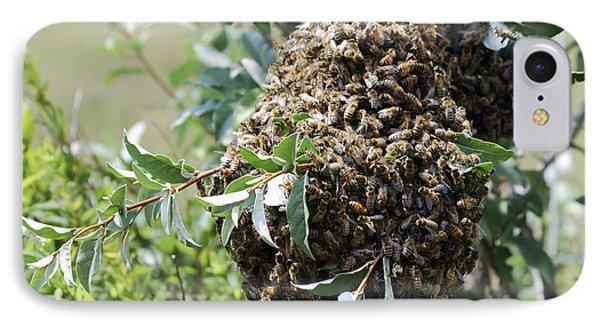 Wild Honey Bees IPhone Case